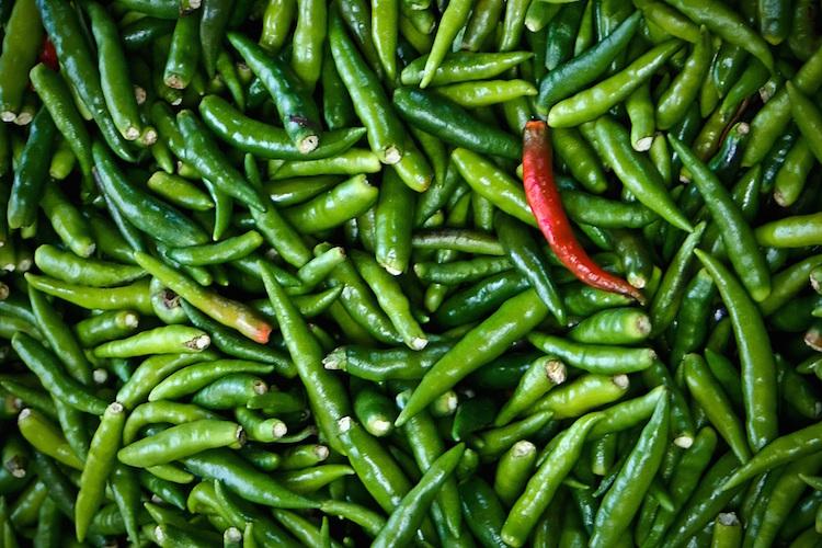 Зеленый чили для женщин